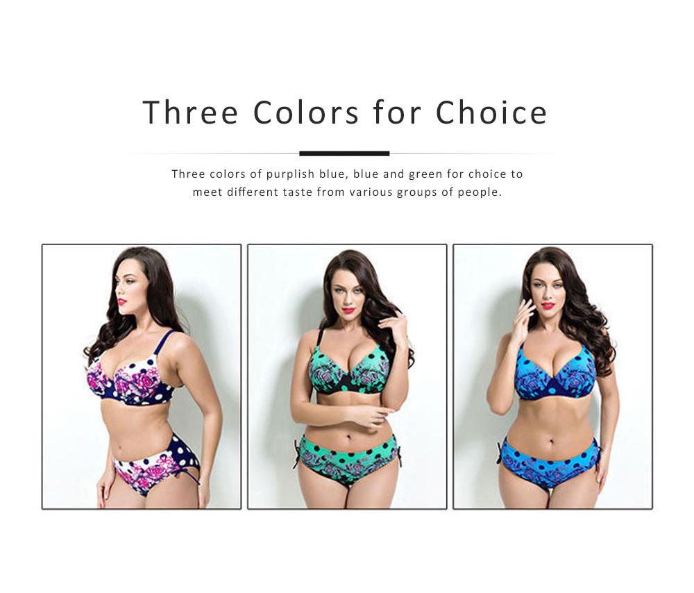 Two-piece Bikini for Large Size Ladies, Plump Swimsuit for Sea, Beach, Swimming Pool, Women Swimwear 2019 5