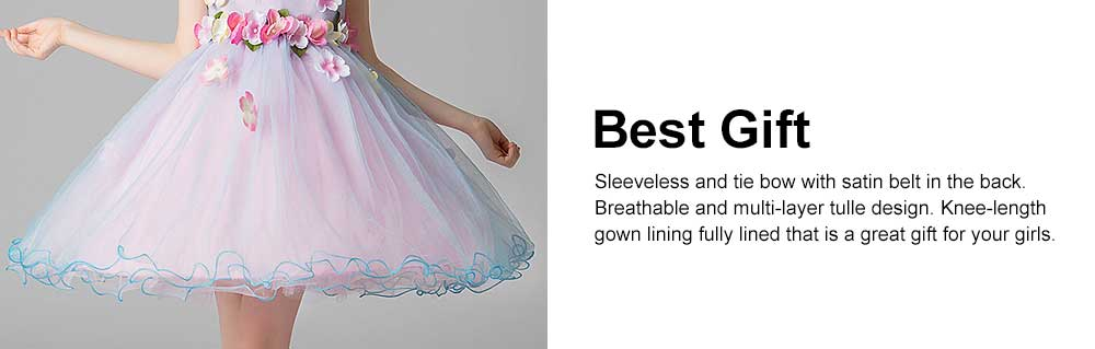 3D Flower Girls Princess Dress, Sleeveless Tulle Birthday Party Dress Best Gifts for Girl 2