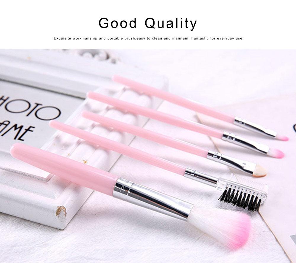 Makeup Brush Sets 5 PCS Make up Brushes for Beginner Makeup Brushes Set Fluffy Crease Cosmetic Brush Set 5