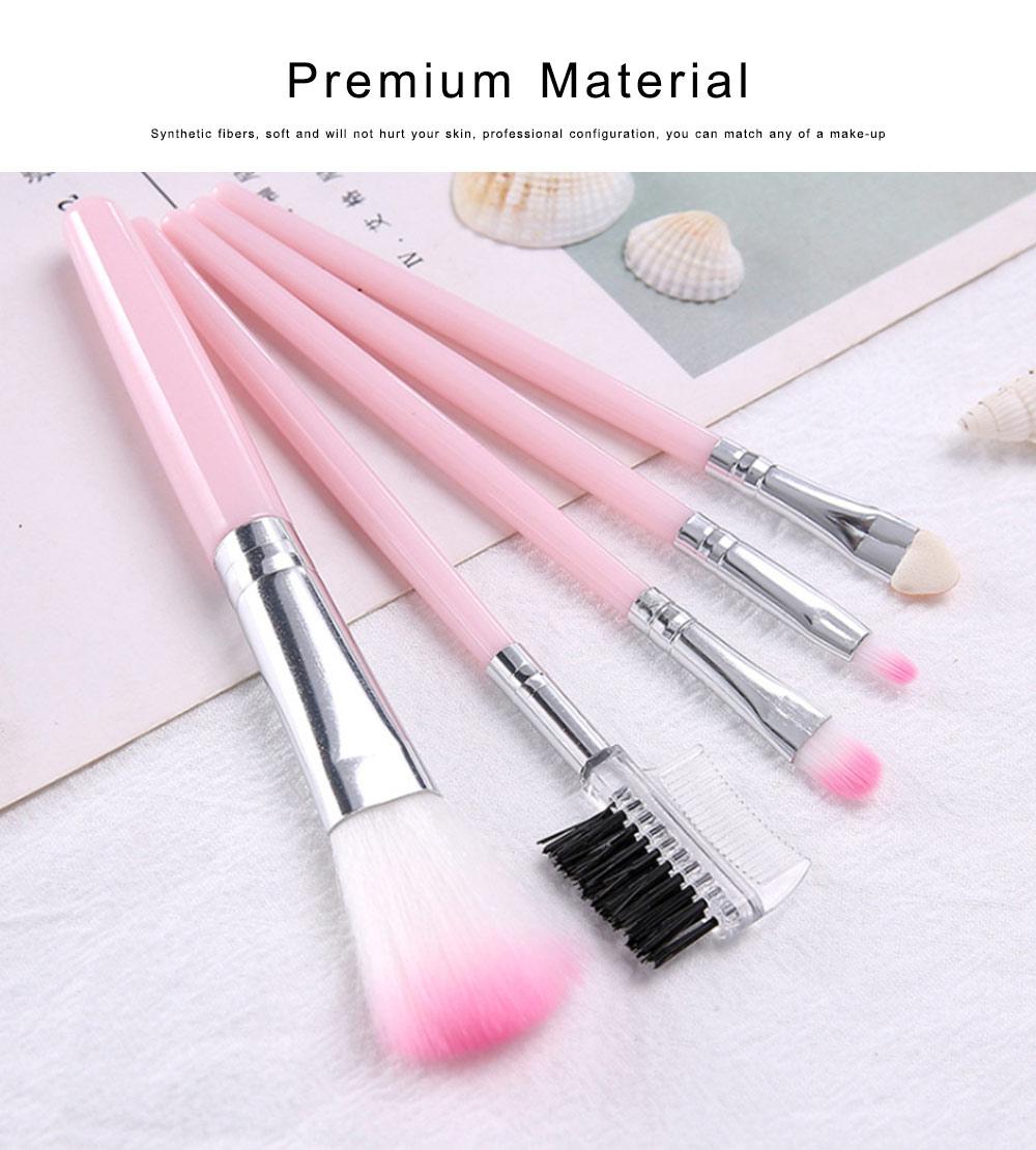 Makeup Brush Sets 5 PCS Make up Brushes for Beginner Makeup Brushes Set Fluffy Crease Cosmetic Brush Set 3