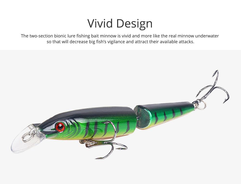 Two-Section Bionic Lure Fishing Bait Minnow for Outdoor Fishing, Fishing Lure Trolling Hard Bait 9g/4.169inch Fishing Gear 1