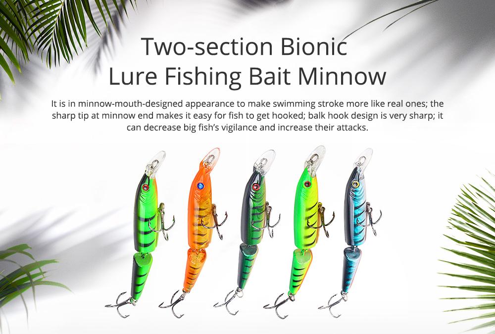 Two-Section Bionic Lure Fishing Bait Minnow for Outdoor Fishing, Fishing Lure Trolling Hard Bait 9g/4.169inch Fishing Gear 0