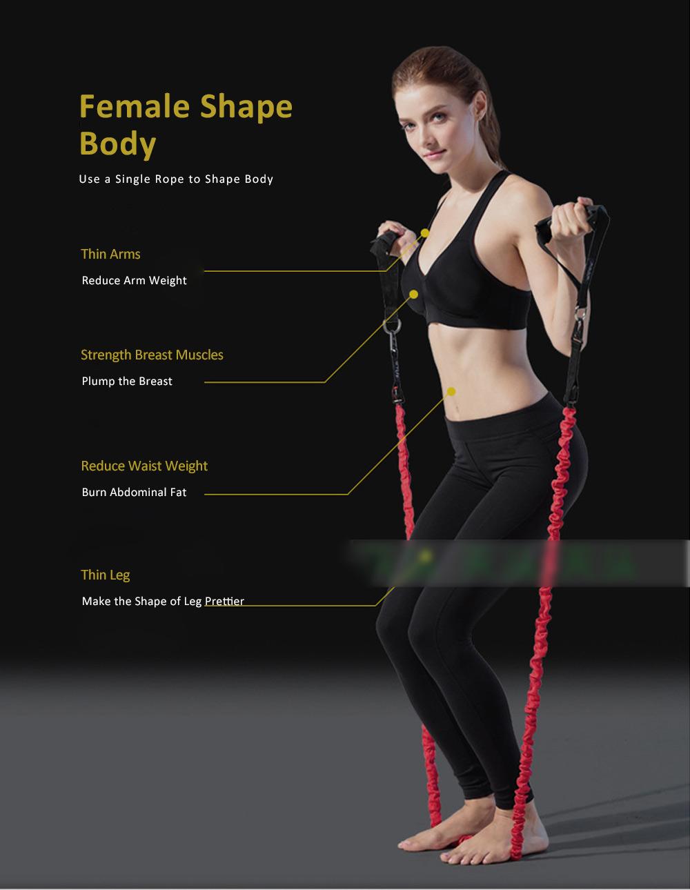 Multifunctional Safe Breaking-proof 11PCS Pull Rope Suit, Gym Yoga Training Exercising Elastic Resistance Band 9