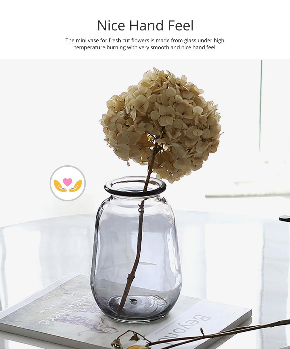 Mini Glass Vases for Centerpieces Cheap Bulk Large Diameter Glass Vase Transparent Vase for Fresh Cut Flowers Dish Table Decorative Vase 1
