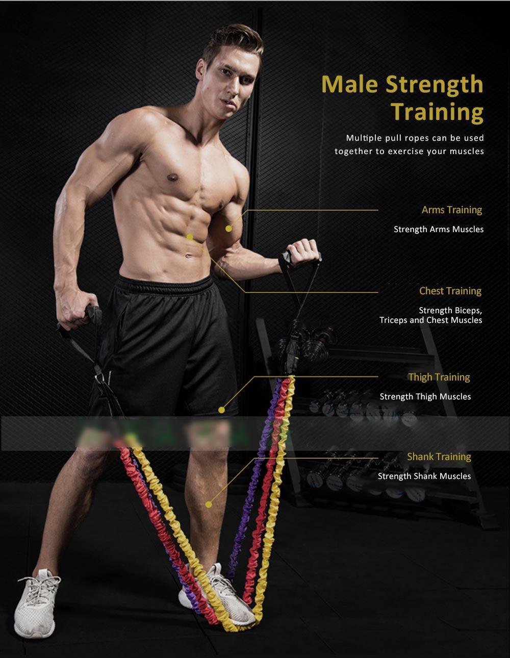 Multifunctional Safe Breaking-proof 11PCS Pull Rope Suit, Gym Yoga Training Exercising Elastic Resistance Band 8