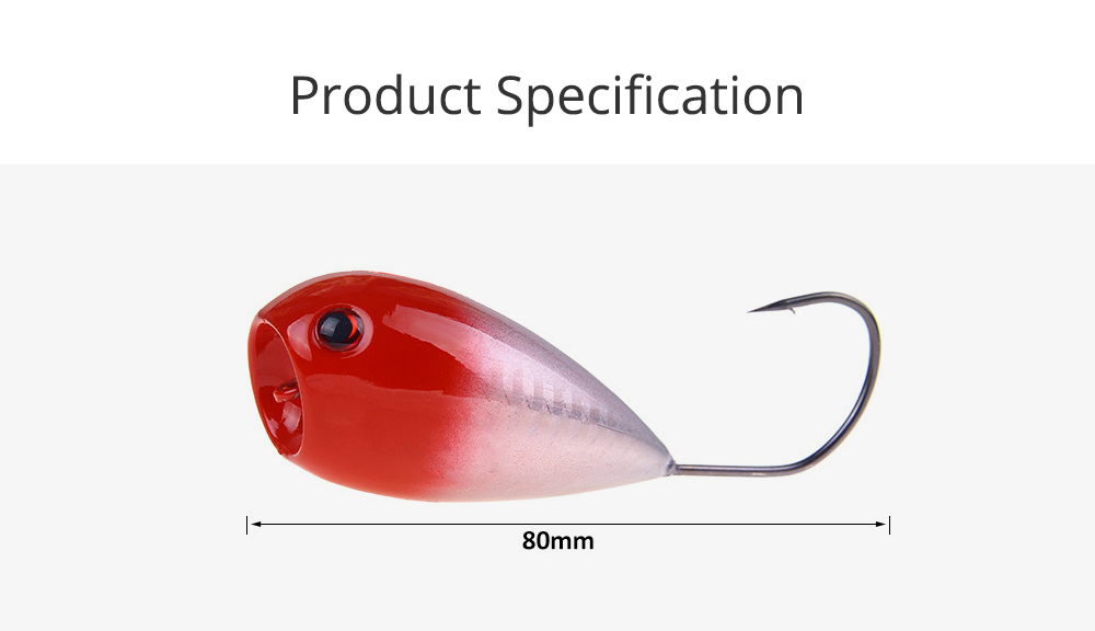 Lure Fishing Bait for Outdoor Fishing Lure Fishing Hard Bait Double Circle Mouth Single Hook Floating Fishing Bait Fishing Lure Fishing Hook Fishing Gear 6