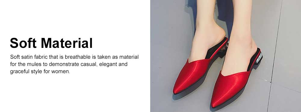 Silk Vamp Sandal with Pointed Head, Flat-heeled Non-slip Shoes for Ladies, Large Size Pure Color Low Heels 2