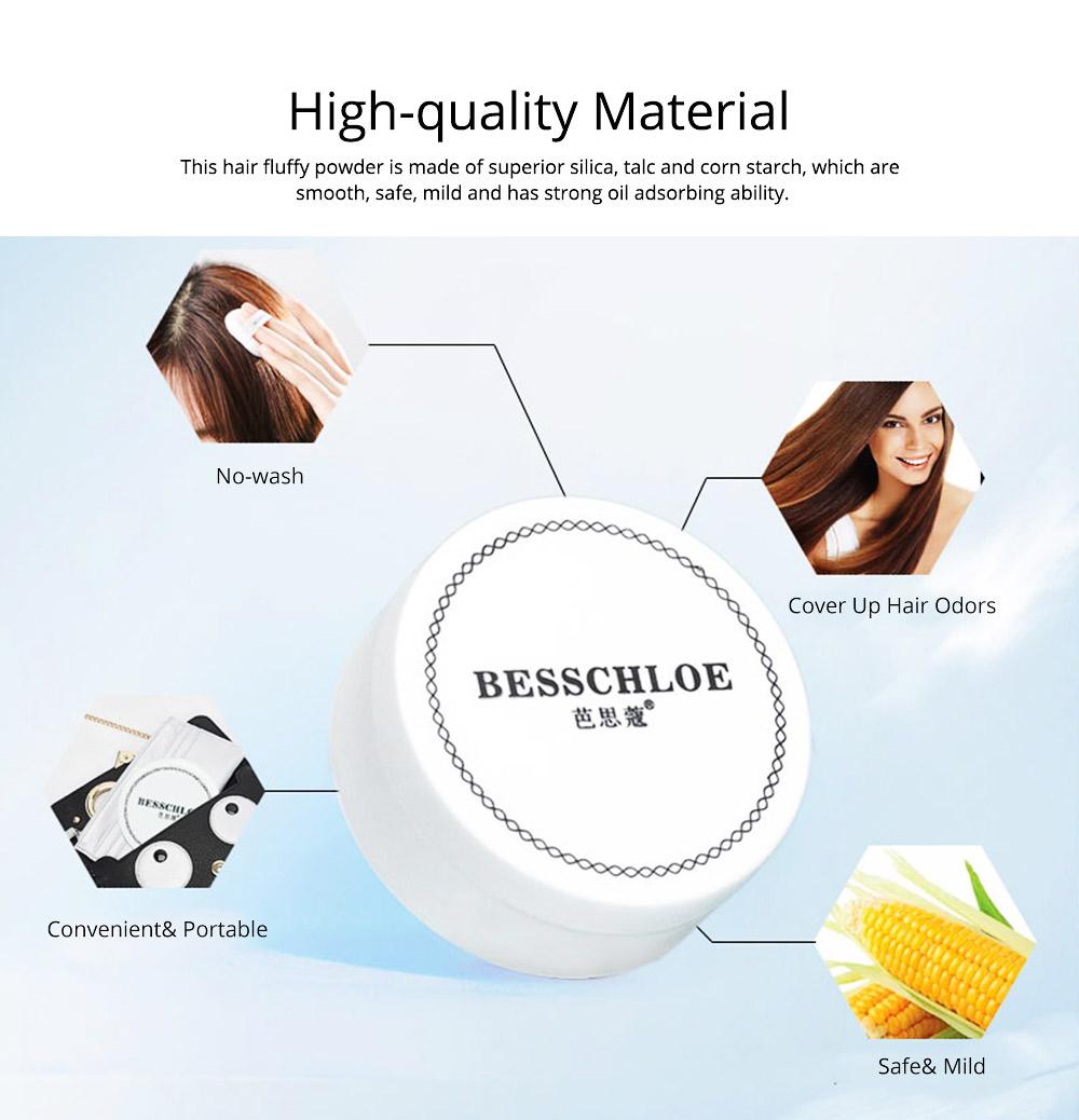 Travel Portable Hair Fluffy Powder, Dust Thin Hair Non-wash Fluffy Building Powder, Dry Clean Volumizing Mattifying Deoiling Fine Powder 1