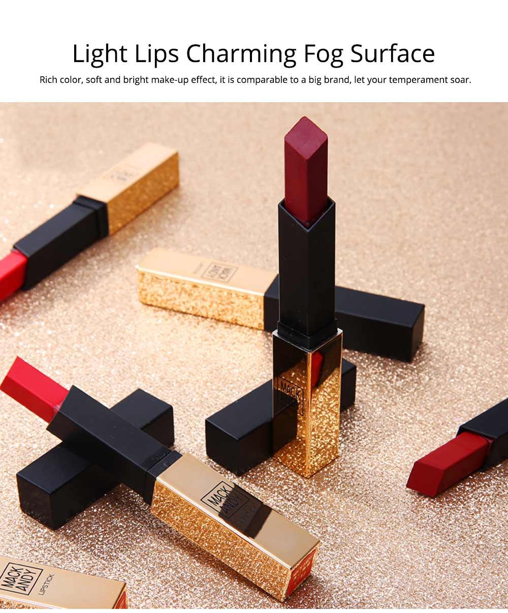 Matte Mist Face Lipstick with Little Gold Tube, Durable Light Stickiness Small Gold Bar Matte Lipstick for Girls 3