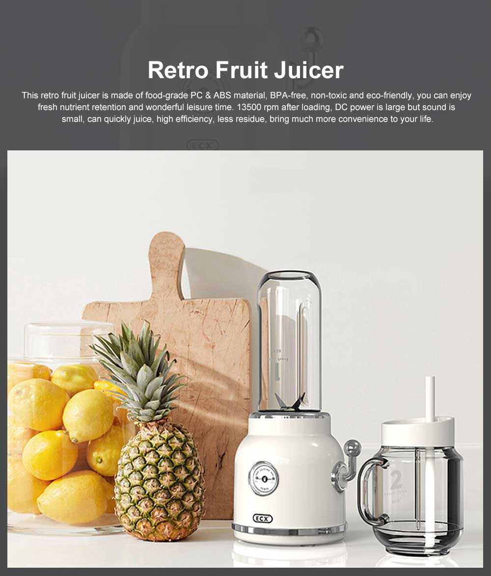 Retro Fruit Juicer Portable High Speed Hand Mini Blender Portable Juice Cup for Home Office Gift with 2 Cups 0