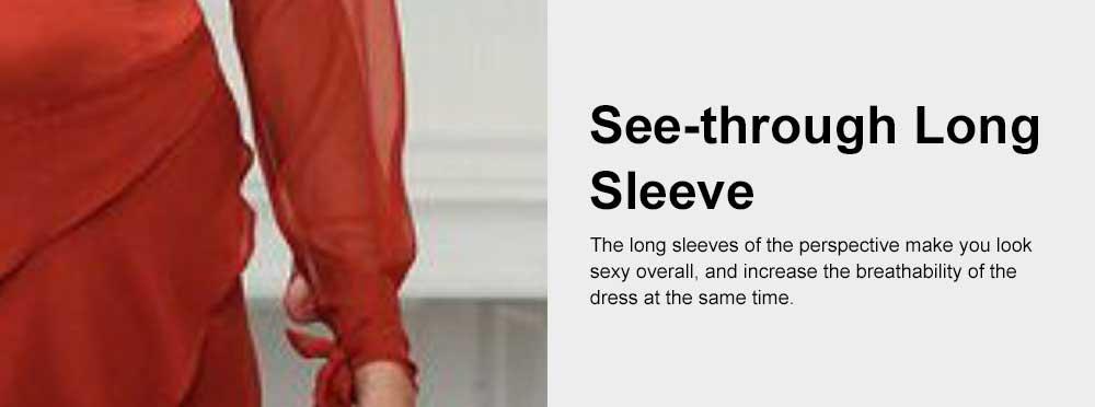 Party Night Dress for Women, Sexy Deep V-neck Long Sleeve Evening Maxi Dress 3