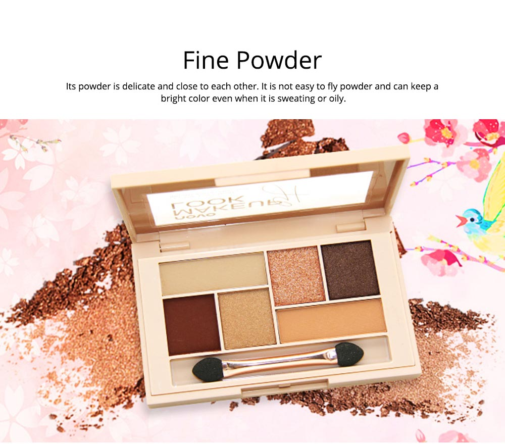 Matte Ground Eye Shadow Disc Silky Six Eyeshadow, Pearl light Matte Color Eye Shadow Disc Make-up Tool for beginners 2