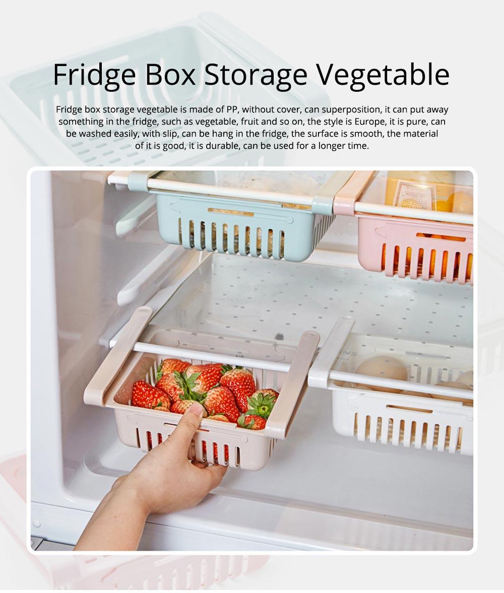 Household Daily Use PP Drawer Fridge Box Refrigerator Storage Lock Vegetable Fruit Asphalt Shelf 0