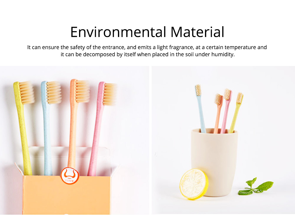 Economic Friendly Oral Hygiene Natural Wheat Straw Toothbrush Tooth Care Cleaning Ultra Soft Slim Tip Bristle Brush Adult Teeth 5