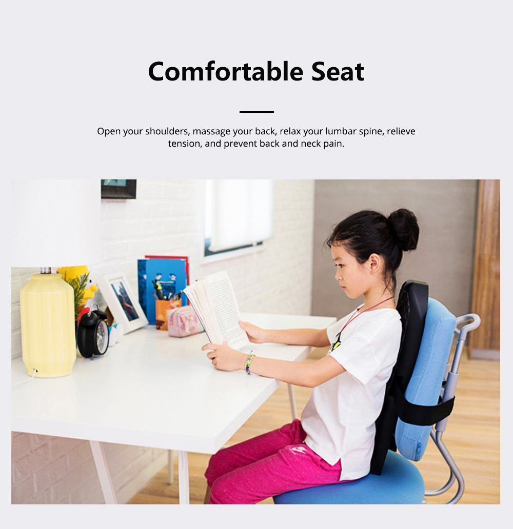 Ergonomic Lumbar Back Cushion with Straps, Back Pillow for Office Chair Car Seat or Home Chair Back Pain Relieving and Posture Correcting 4