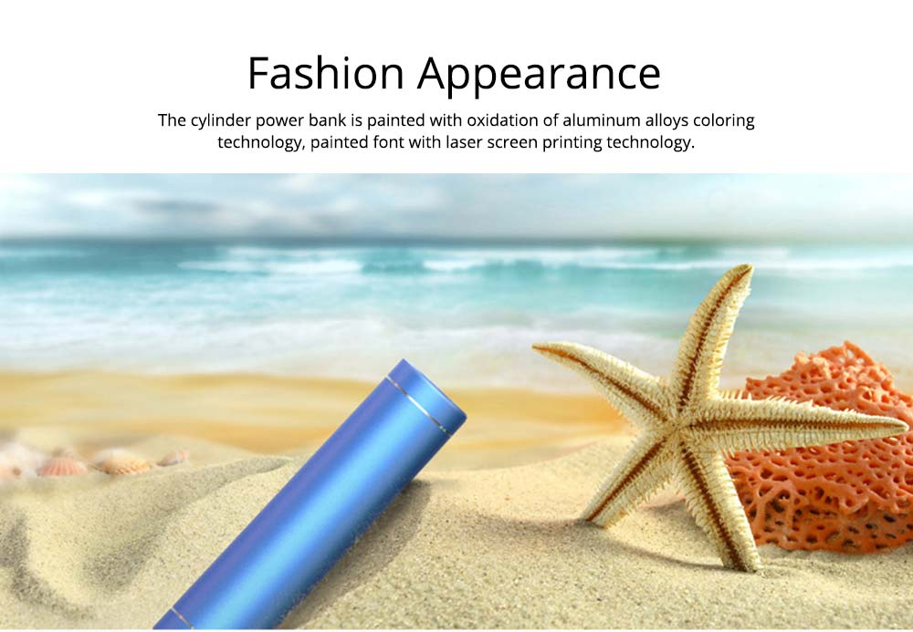 Exquisite Phone Charging Aluminum Alloy Cylinder Portable External Battery Charger USB Socket Power Bank for Cell Phone 4