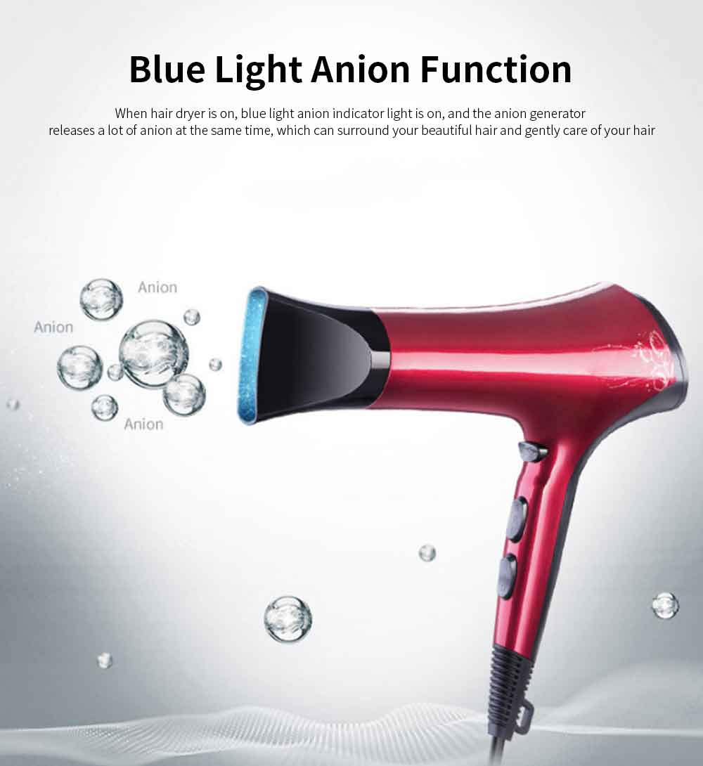 FLYCO 2200W Negative Ions Hair Dryer Lightweight Hair Blow Dryer with Nozzle Attachment 6-Level Temperature and Speed Combination 1