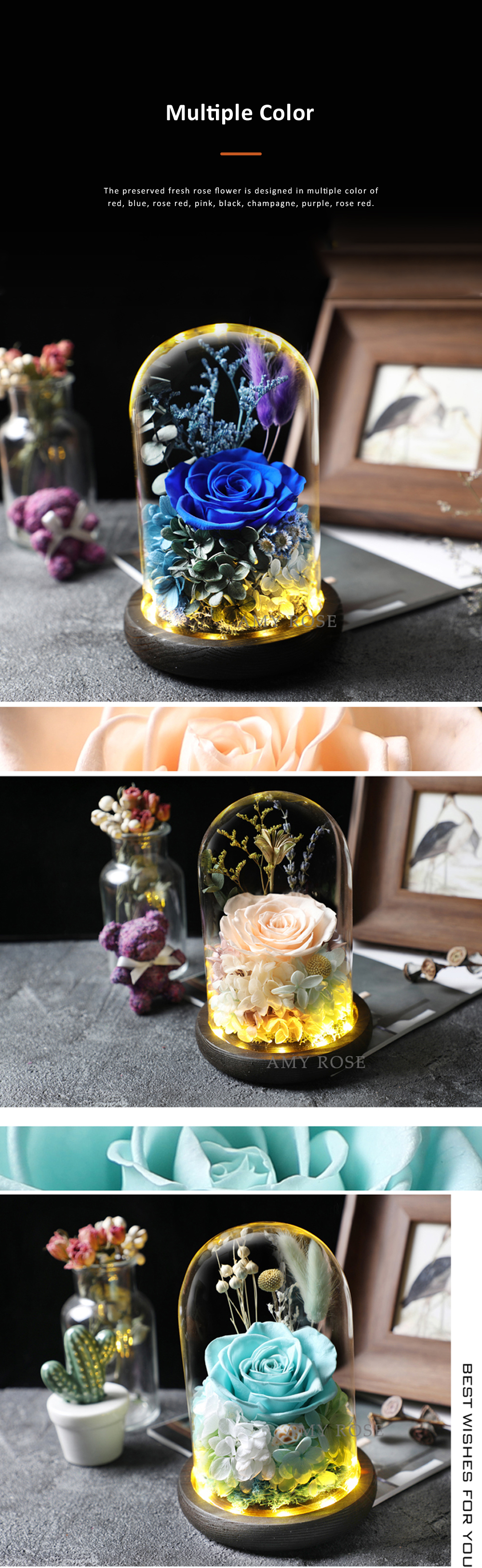 AMYROS Preserved Fresh Flower for Valentine's Day Christmas Dry Rose Bouquet Glass Covered Preserved Fresh Flower 4