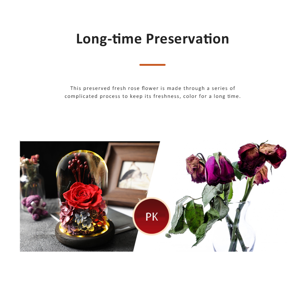 AMYROS Preserved Fresh Flower for Valentine's Day Christmas Dry Rose Bouquet Glass Covered Preserved Fresh Flower 3