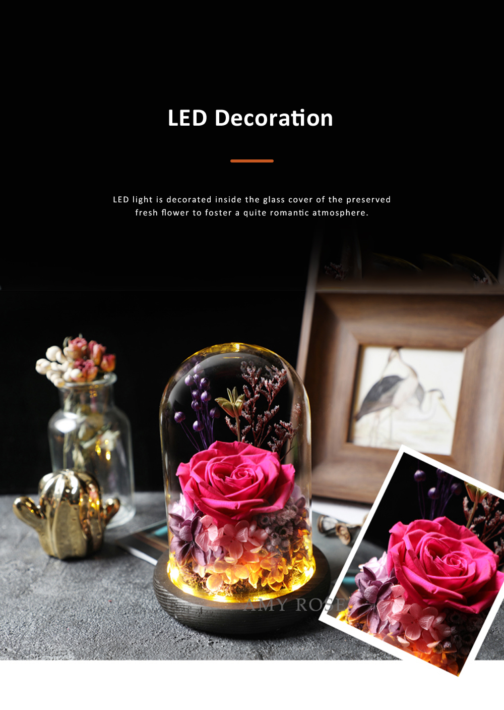 AMYROS Preserved Fresh Flower for Valentine's Day Christmas Dry Rose Bouquet Glass Covered Preserved Fresh Flower 2