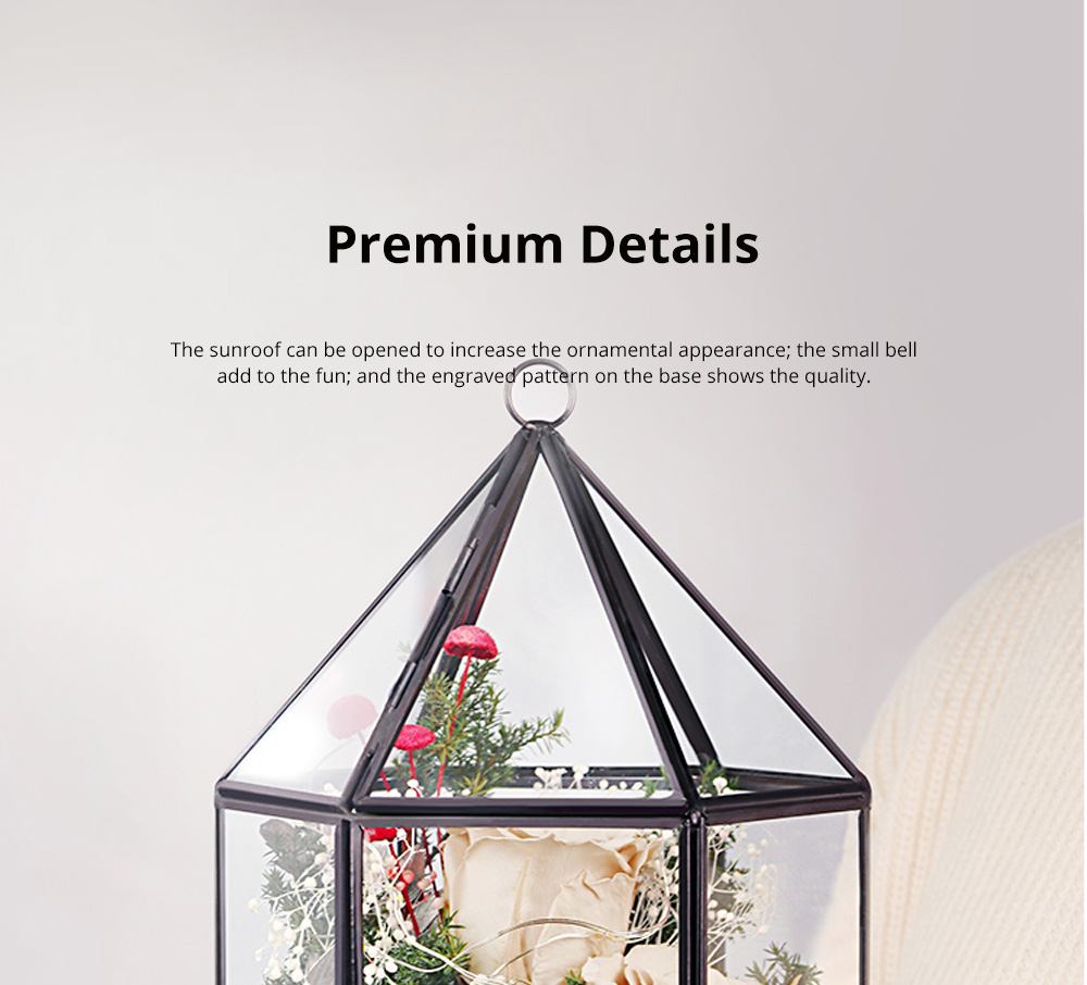 Immortal Flower Rose with Warm Night Light Eternal Flower House Gift Box Creative Gift for Valentine's Day Christmas Birthday 5