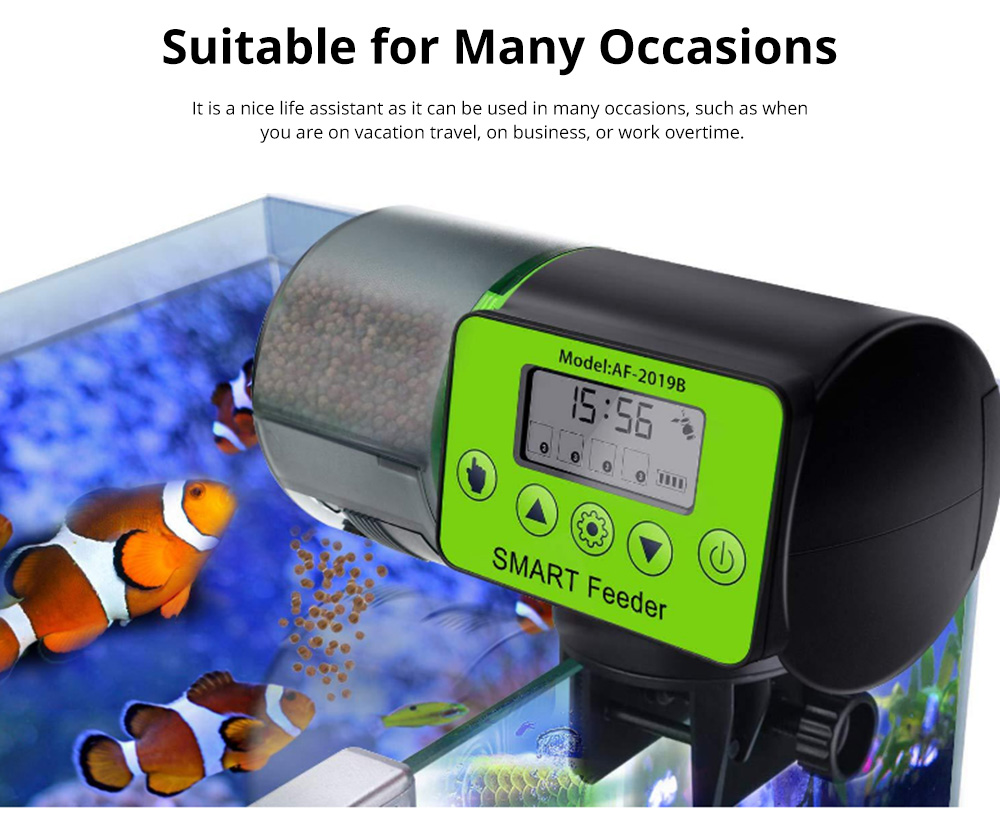 Intelligent timing Automatic Fish Feeder Battery Powered Smart Feeder with 4 Timing Modes and LCD Display for Easier Pet Feeding 7
