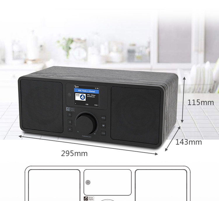 Ocean Digital Haixian Internet Radio (with remote control) WR-230S Dual Speakers Multi-function Stereo Amplifier 11
