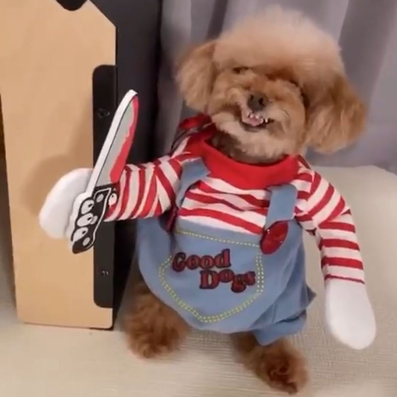 Pet Clown Dress Up Holiday Funny Halloween Christmas Dog Cat Upright Pet Autumn And Winter New Suits 1