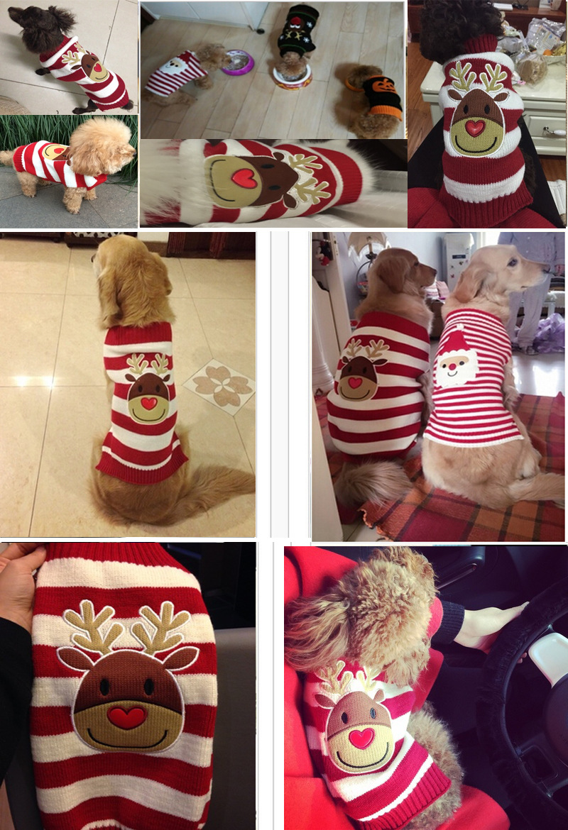 Dog Dlothes Spring And Autumn Teddy VIP Puppy Sweater New Year Christmas Pet Clothes Two-Legged Costume 4