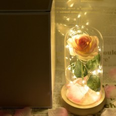 Champagne Roses Lamp with LED Fairy String Lights, Fallen Petals and ABS Base in A Glass Dome Valentine's Day Romantic Gifts