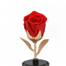 Eternal Flowers Silk Rose, Rotating Music Box with Glass for Wife, Lover, Girlfriend, Wedding Anniversary, Birthday Present