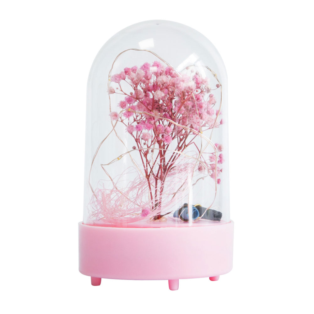 Dry Gypsophila Preserved Fresh Flower with Acrylic Encloser as Valentine's Day Gift Ornament