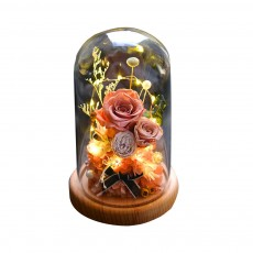 Preserved Fresh Flower Gift with Glass Pot and Wooden Base, LED Lights Romantic Rose for Girlfriend