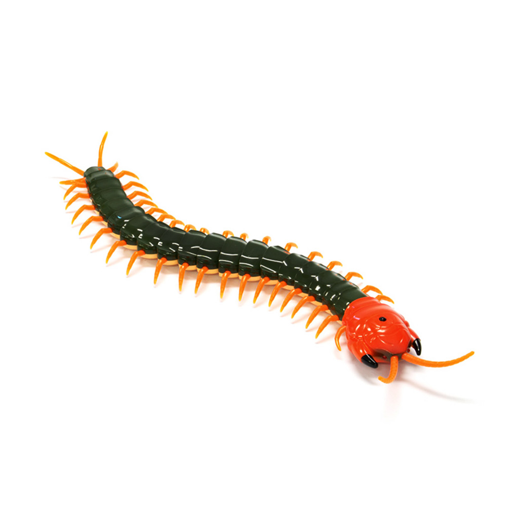 Remote Control Electric centipede from Toys, Imitation centipede with Flexible Joints, Shake sound with a Parody Toy