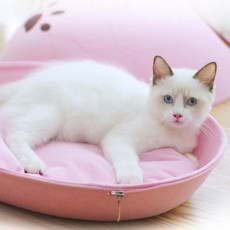 Detachable High-quality Felt Pet House, 360℃ Half-moon Shape Cat Nest, with Smooth and Flat Zipper