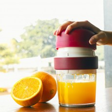Multifunctional Manual Juice Extractor for Household Use, Small Size Simple Juice Extractors with Maximum Nutritional Value Manual Juicer