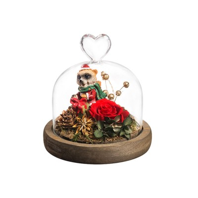 Glass Cover Decoration Preserved Flowers, Roses, Bears with lights Gifts for Wedding Anniversary Valentine's Day