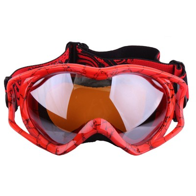 Stylish Ski Goggle with Double Lens PC Lens, Anti-wind Anti-fog Eye Protection Snowboarding Goggle