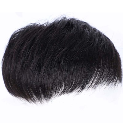 Men's Wigs, Hairpiece for Men, Natural Wig Hair Line for men with Hair Loss, Handsome Short Straight Human Hair Wigs