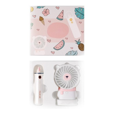Nano Sprayer for Face Caring Summer Refreshing Set, Portable USB Charging Mini Fan and Facial Sprayer