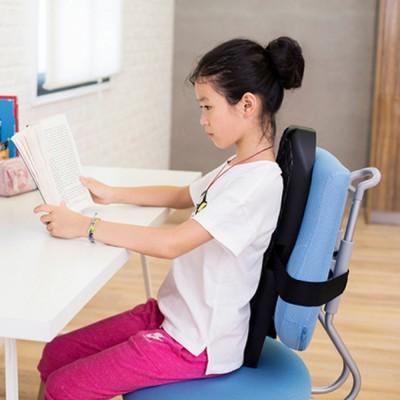 Ergonomic Lumbar Back Cushion With