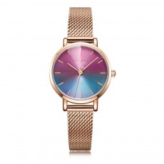 Women's Quartz Watches with Stainless Case Milanese Mash Band and Ultra Thin Dial Waterproof Wrist Watch
