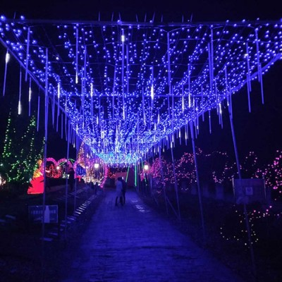 Meteor Shower Led String Lights Outdoor