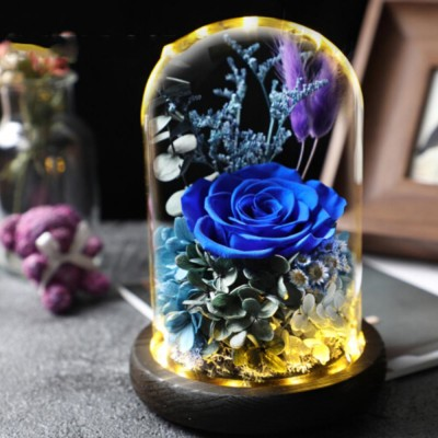AMYROS Preserved Fresh Flower for Valentine's Day Christmas Dry Rose Bouquet Glass Covered Preserved Fresh Flower