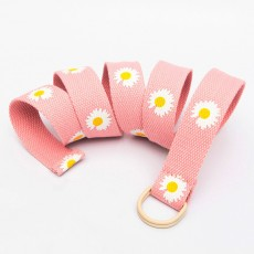 Canvas Belt Wild Casual Pin Buckle Belt Tide Models Young People Denim Belt For Women Ladies