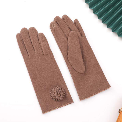 2020 New Gloves Autumn And Winter Touch-screen Warmth Derong Cute Ctudents Riding Bicycles Driving Thickened Cold Gloves For Ladies