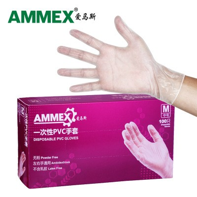 AMMEX GPX3KRT Food Grade Household Film Transparent Powder-free Oil-proof Disposable PVC Gloves