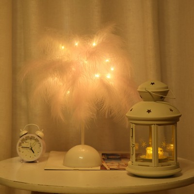 2021ins Style Decorative Lamp Feather Small Table Lamp Birthday Gift Romantic Creative Led Lantern