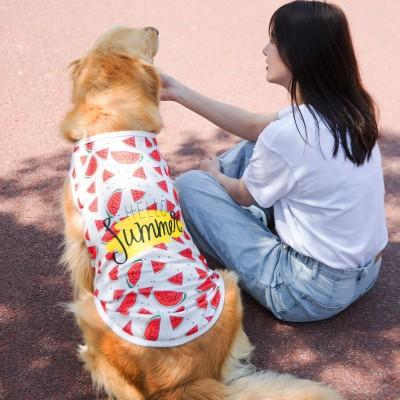 Big Dog Spring and Autumn Guard Two-legged Clothes Golden Retriever Samoyed Labrador Medium Large Dog Expensive Pet Clothes