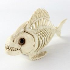 Halloween Party Fish Skeleton Ornaments Halloween Costume Haunted House Tool